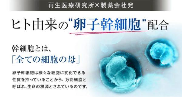 ライフラインベーシックモイスチャーセラム ヒト卵子幹細胞エキス