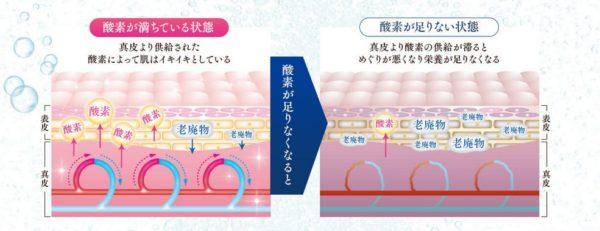 レヴィーガ モイスチュアセラム 成分 酸素水